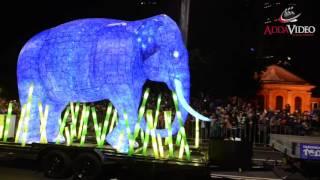 Video Taronga Zoo Parade 100 Years MP3, 3GP, MP4, WEBM, AVI, FLV Mei 2017