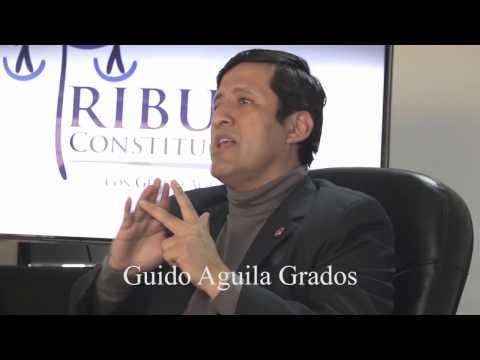 Programa 02 - Modificaciones Constitucionales  - Tribuna Constitucional