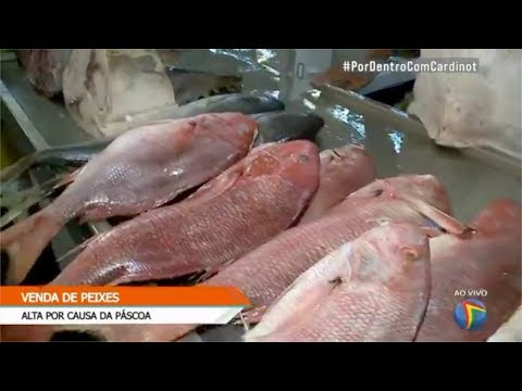 Nutricionista tira dúvidas sobre peixes