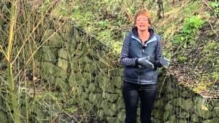 Kőrács (gabion) meredek területen - Kertbarátok - Kertészeti TV - műsor