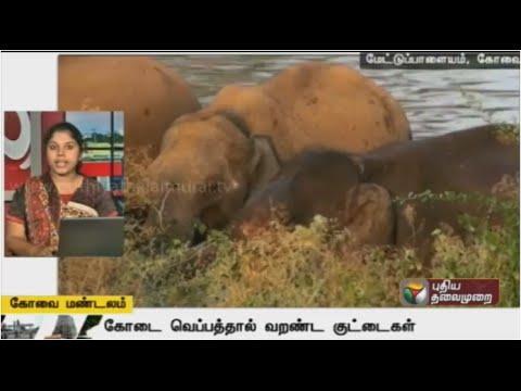 A-Compilation-of-Kovai-Zone-News-25-03-16-Puthiya-Thalaimurai-TV