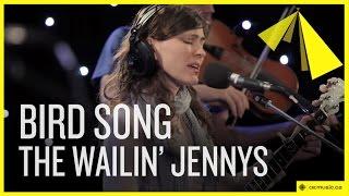 Bird Song The Wailin' Jennys