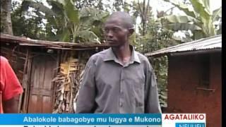 Download Video Abalokole babagobye mu lugya e Mukono MP3 3GP MP4