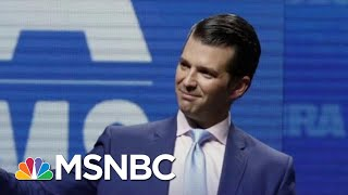 Reports: A New Concern For President Donald Trump Jr. | The Last Word | MSNBC