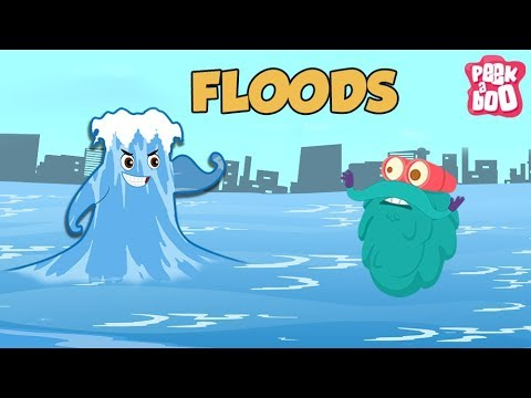 FLOODS - The Dr. Binocs Show | Best Learning Videos For Kids | Peekaboo Kidz