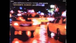 Goodbye Horses - Hayden Thorpe & Jon Hopkins [lyrics]