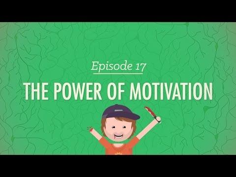 The Power of Motivation: Crash Course Psychology #17