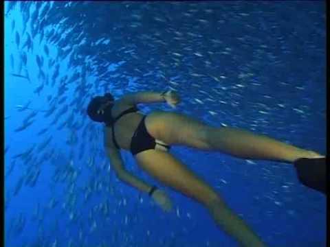 Julie Gautier – Le monde de l'apnée – La Réunion