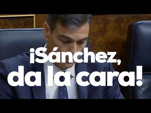 Pablo Casado te explica por qué Pedro Sánchez no quiere un debate cara a cara