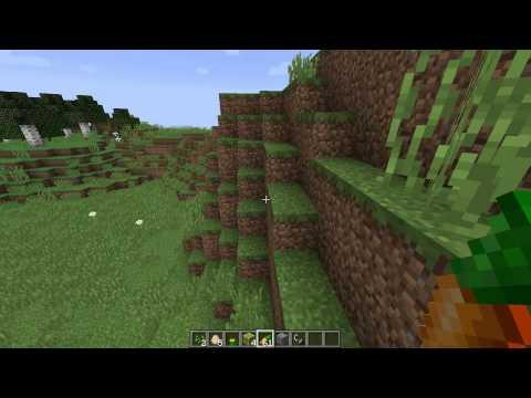 Minecraft Server?!