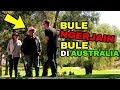 Download Lagu PRANK BULE NGERJAIN BULE DI AUSTRALIA! Mp3 Free