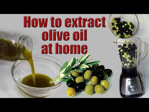 How To Make Extra Virgin Olive Oil At Home