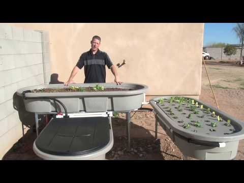 How does an Aquaponics Garden Work By EndlessFoodSystems.com