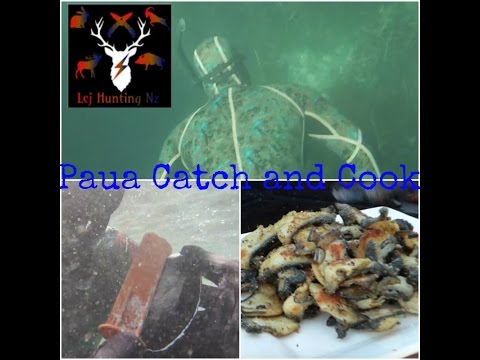 Paua Catch And Cook NZ