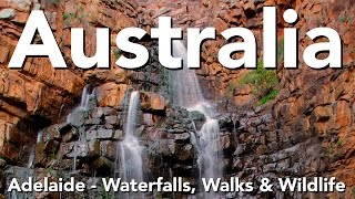 Adelaide Australia  City new picture : Australia - Adelaide - Waterfalls, Walks & Wildlife