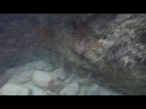 Piscina natural formato de peixe em Jericoacoara
