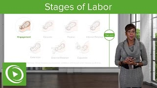 Watch the complete obstetrics course on http://lectur.io/obs9 and prepare for your next medical exam with video lectures, in-depth, high-yield content and ...