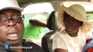 Ity And Fancy Cat show: TAXED TAXI Video