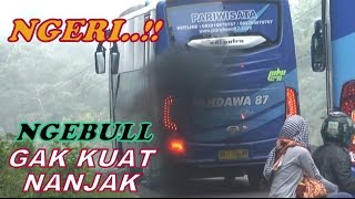 Video Detik-detik Bus Tidak Kuat Nanjak.. MP3, 3GP, MP4, WEBM, AVI, FLV Agustus 2018