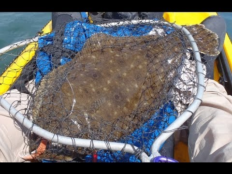 Kayak Fishing for Flounder