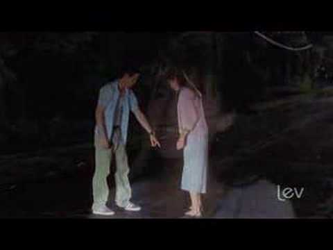 Someday We'll Know - A Walk To Remember