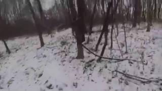 Snowy Trail Run - Rocks and Roots Trails