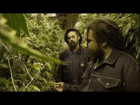 Video Damian 'Jr.  Gong' Marley ft. Stephen 'Ragga' Marley - Medication download in MP3, 3GP, MP4, WEBM, AVI, FLV January 2017