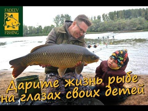 Дарите жизнь рыбе на глазах своих детей