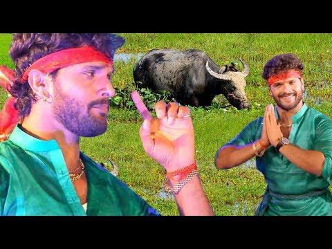 Video HD VIDEO - रहली भईस चरवईया Gawaiya Tunhi Banwalu Na - Khesarilal Yadav Superhit Dj Navratri Song download in MP3, 3GP, MP4, WEBM, AVI, FLV January 2017