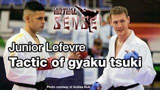Junior Lefevre - Biomechanics and tactic of gyaku tsuki - Karate All Stars 2013