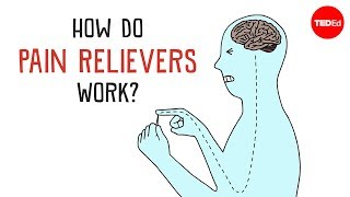 How Do Pain Relievers Work? – George Zaidan