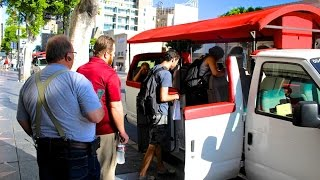 Hollywood Celebrity Homes Tour and Open Bus Tours
