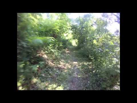 Vidéo filmée par Mr Sciscioli, classé 3ème, durant sa course...