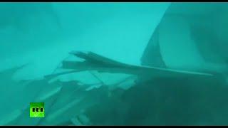 Video Dive Footage: AirAsia QZ8501 fuselage search & recovery MP3, 3GP, MP4, WEBM, AVI, FLV Juli 2018