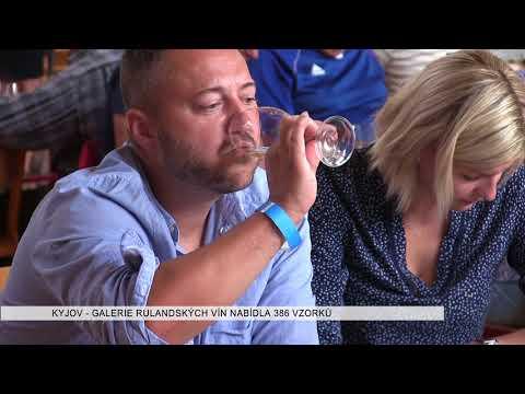 TVS: Deník TVS 18. 8. 2017