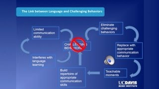 Parent-implemented Language Intervention Using Distance Video-teleconferencing