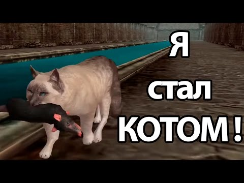 Я стал КОТОМ ! ( Ultimate Cat Simulator )