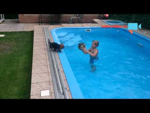 hra v bazénu