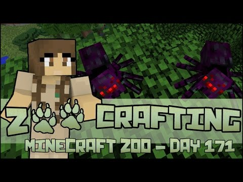 Mother of the Twilight Spiders?! 🐘 Zoo Crafting Special: Season 2- Episode #171