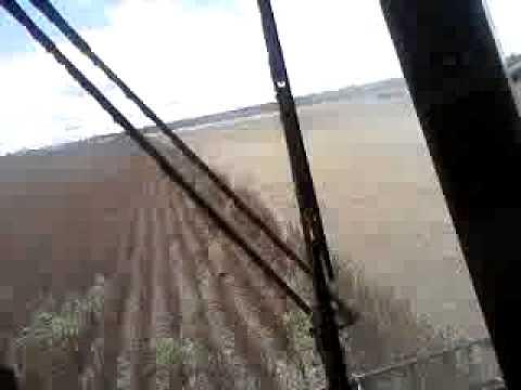Colhendo soja em lucas do rio verde mt
