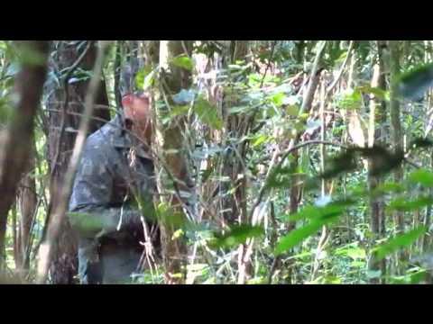 Inhambu- Chintã sendo atraido no pio.Caçadores de Imagens