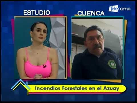 Incendios forestales en el Azuay