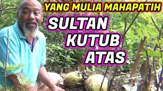 Video Pak Ndul - YANG MULIA MAHAPATIH SULTAN KUTUB ATAS MP3, 3GP, MP4, WEBM, AVI, FLV Maret 2019