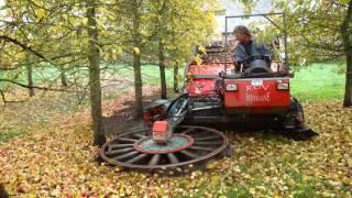Apple Harvest Molagnies 2010