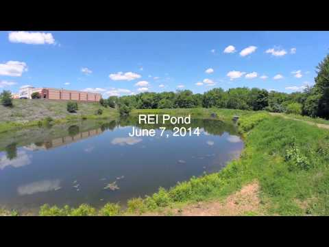 Quadcopter video of Wilde Lake, Columbia, Maryland