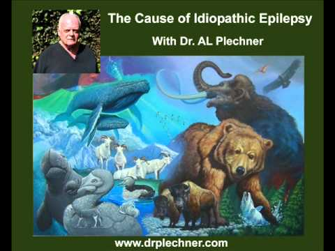 The Cause of Idiopathic Epilepsy in Humans and Animals