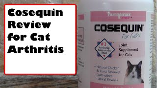 COSEQUIN REVIEW FOR CAT ARTHRITIS