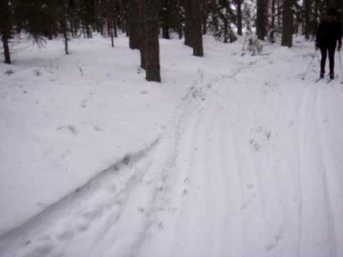Cross country skiing in Orsa, Dalarna, Sweden