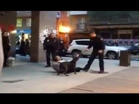 Un perro ataca a dos policías en A Coruña
