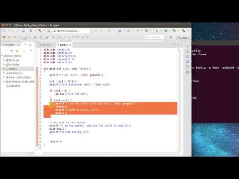Linux fork() Introduction (видео)